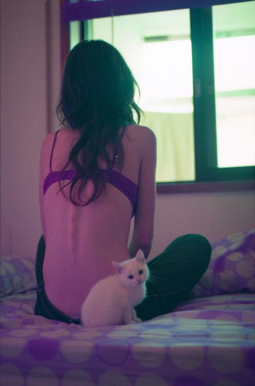 backcat